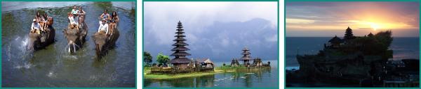 Bali-Elephant-Ride-Package2
